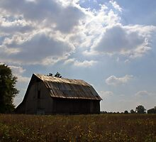 Old Barn - Burgess Falls State Park by Ashley Crookes