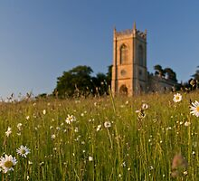 Croome Church - Spring by Neil Dotti