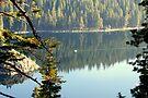 """""""Emerald Bay"""" by Lynn Bawden"""