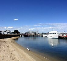 Lakes Entrance Foreshore by Chris Chalk