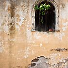 Arched Window, Antigua by morealtitude