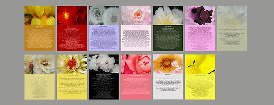 Cards for mothers that have children with cancer. by DavidROMAN