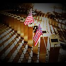 Memorial flags by Gary Redlinski