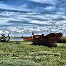 Wyre Estuary Wrecks . by Lilian Marshall