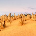 The Pinnacles by BarkingGecko