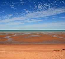 Low Tide by BarkingGecko