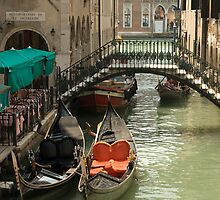 Gondolas On The Canals Of Venice by Robert Taylor