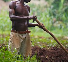 Gulu Farmer by linelight