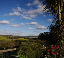 valley between Lobethal and Charleston, Adelaide Hills by MarieB