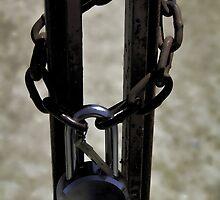 Locked Out by Renee D. Miranda