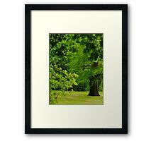 Garden on The Hill Framed Print