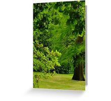 Garden on The Hill Greeting Card