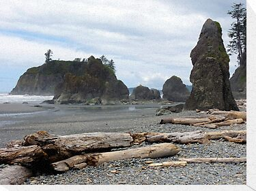 Ruby Beach - Oympic Peninsula Washington by Lucinda Walter