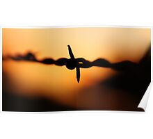 Barbed wire in silhouette Poster