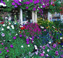 petunias by deville