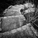 Steps to the door of your heart by Pirostitch