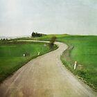 Country road by M a r t a P h o t o g r a p h y