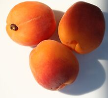 Ripe apricots by Sue Brown