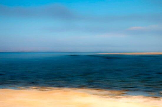 Salton Sea by Mary Ann Reilly