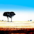 Wheatbelt Landscape #1 by outsider