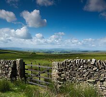 See for miles by Andrew Leighton