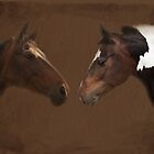 Horses by dave2k11