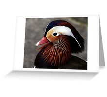A Mandarin Portrait  Greeting Card