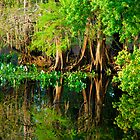 Breem Pond by michaelBstone