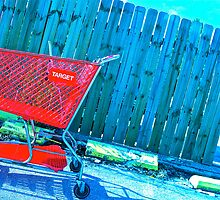Rolling Shopping Cart by Dr. Charles Taylor