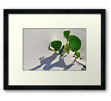 Treasure Island ..... Bribie Island Framed Print