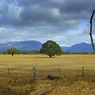 Grampians by Kerry  Hill
