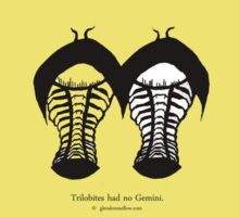 Trilobites had no Gemini.  by Glendon Mellow