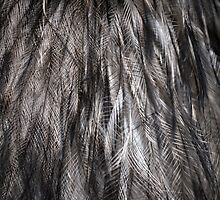 Old Man Emu - Not Yet a Feather Duster by Creativecap