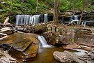 Delaware Falls In Ganoga Glen by Gene Walls