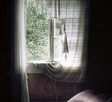2.7.2010: Eternal Summer by Petri Volanen