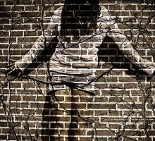 You're just another brick in the wall by Erica Sprouse