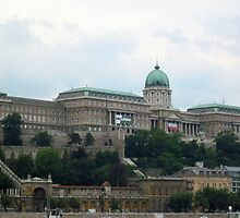 Royal Palace/Castle,capital Budapest World Heritage Site (Europe) by ambrusz
