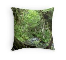 Through the Moss Covered Trees Throw Pillow