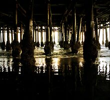 Beneath the Pier by selaphoto