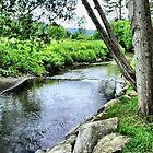 Vermont And It`s Rural Beauty by Deborah  Benoit