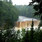 Tahquamenon Falls, Michigan (Upper Peninsula) by BarbL