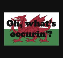'Oh, what's occurin'?' by Paul James Farr