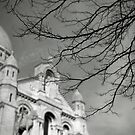 Sacré coeur by Laurent Hunziker