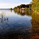 Lake Kochelsee Germany by Daidalos