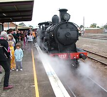 Steam Loco 3237 by Gary Kelly