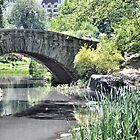 Gapstow Bridge by joan warburton