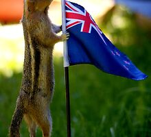 JASPER WITH THE FLAG OF NEW ZEALAND by Betsy  Seeton
