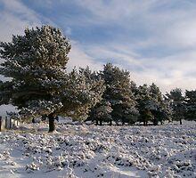 Winter on Kerloch by Suzanne Edge
