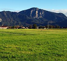 Oberbayern 03 by Daidalos