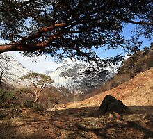 April in Glen Nevis. by John Cameron